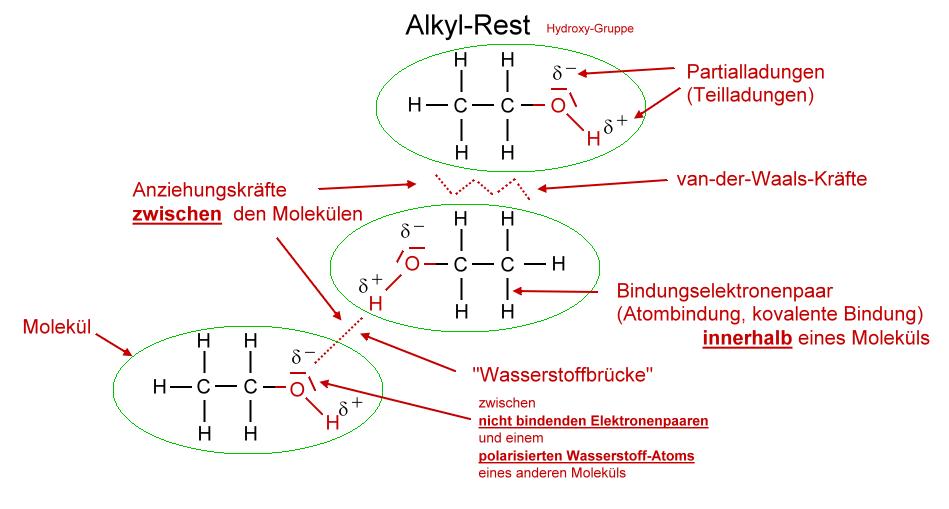 Struktur/Eigenschaften - Chemiezauber.de